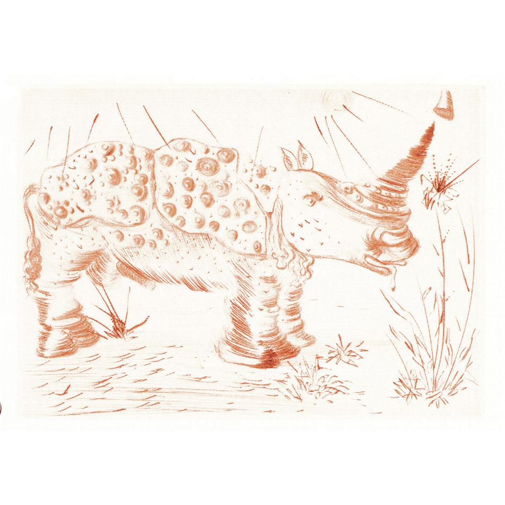 0527_rhinoceros
