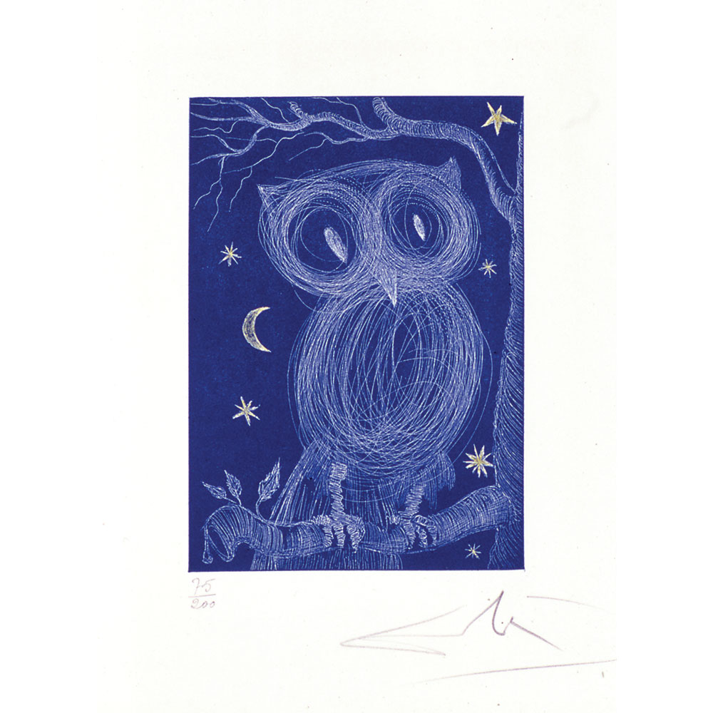 0506_LaPetiteChouette_Owlet_SecondEdition_WhiteOwlWithBlue